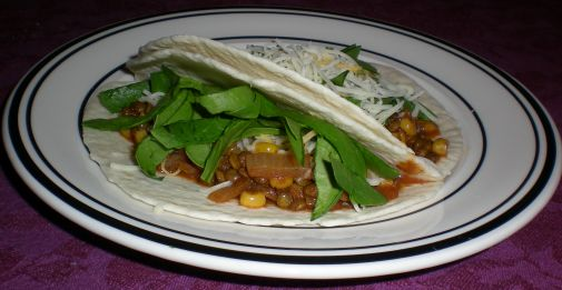 The Misunderstood Eggplant » Blog Archive » Spiced Lentil Tacos